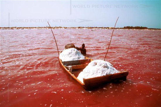fisheman at work - Retba lake.jpg