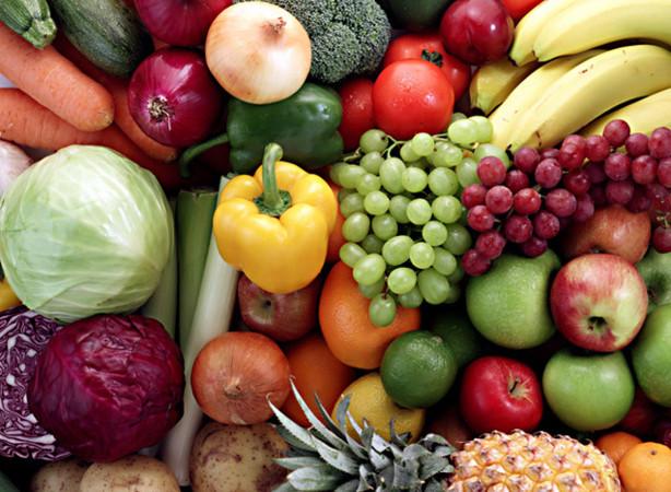 horticulture-614x450.jpg