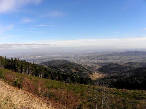 Vallée du Rhone depuis le Crêt de l'oeillon 1370m