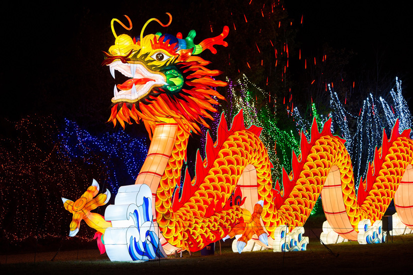 Chinois dragon
