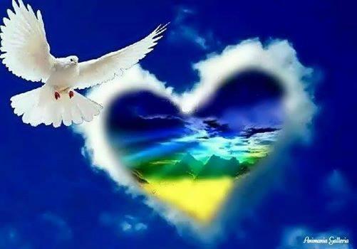 coeur et colombe.jpg