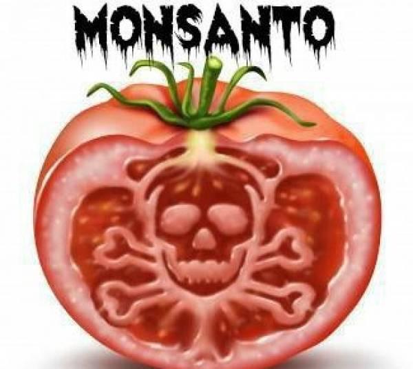 monsanto-evil-tomato.jpg