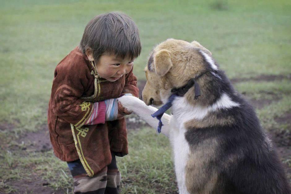 enfant et animal.jpg