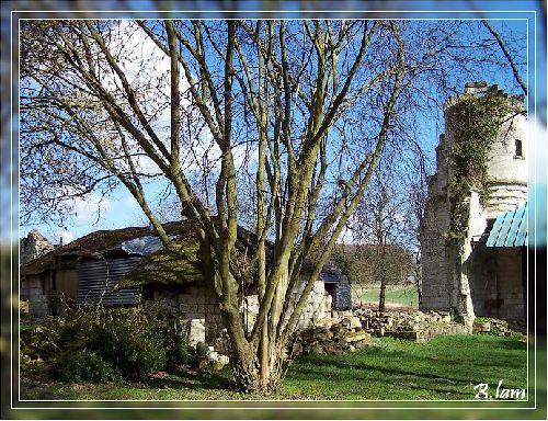 Les Ruines du Prieuré de Moreaucourt