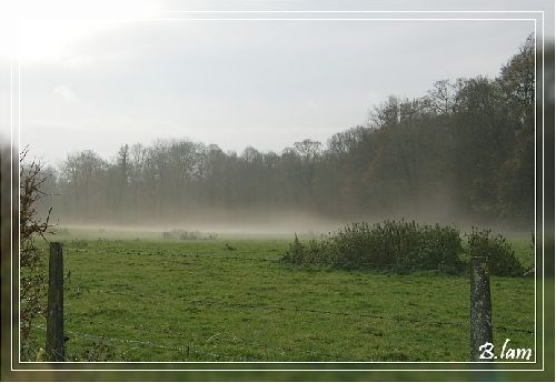 La Nappe de Brouillard
