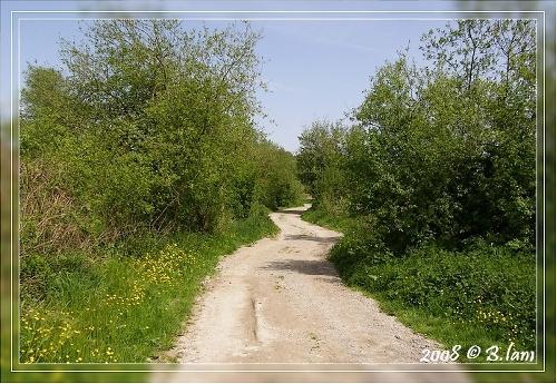 Mon Sentier Préféré du Marais des Boeufs (Camon)