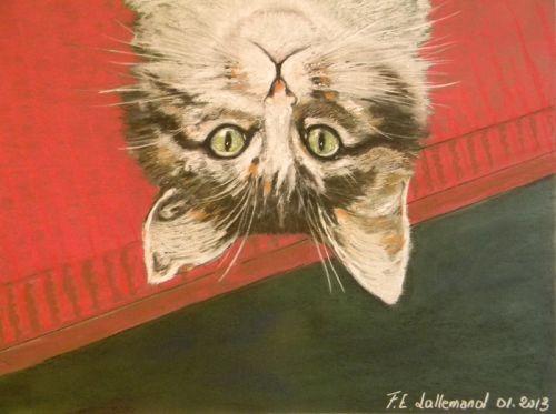 Kitty ,chatte très spéciale.