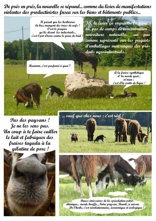 page-2-vache-de-salon-!.jpg
