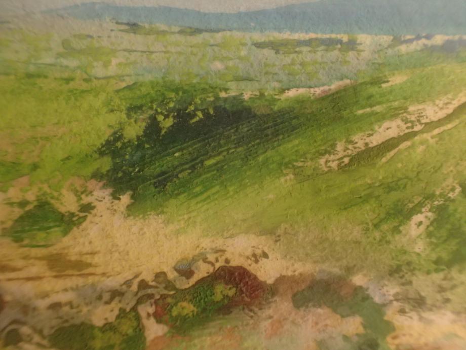 détail saut de la mounine vallée du lot (5).JPG