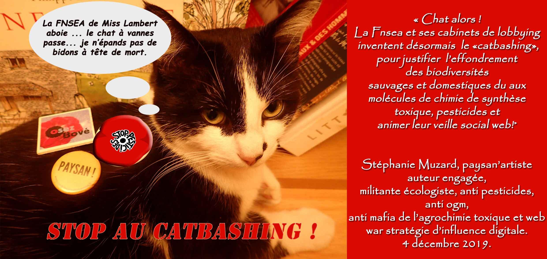 stop-au-catbashing.jpg
