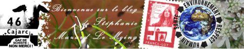 bannière site paroledecitoyens.blog4ever.com