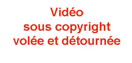 vidéo-volée