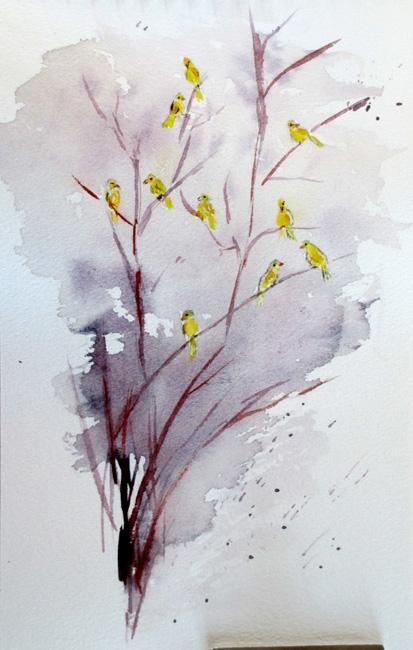 canaries jan 14 p.jpg