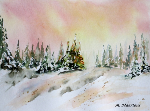 foret de sapins sous la neige jan2015 p.jpg