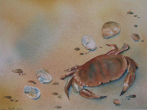 A la plage (2006)
