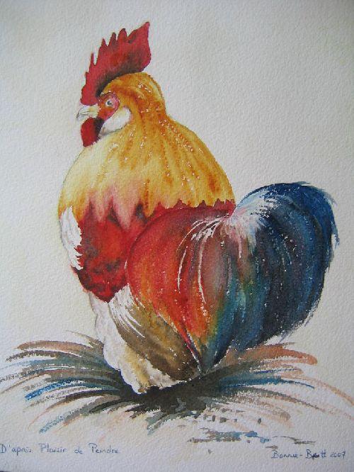 Coq d'après un modèle pastel dans plaisir de peindre (2007)