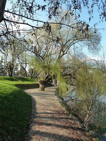 Balade sur les bords de Marne (janv.2012)