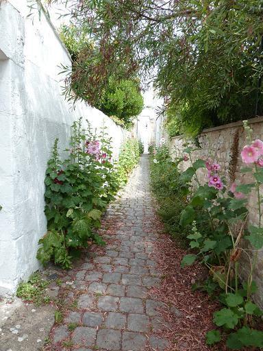 Une ruelle de St-Martin-de-Ré