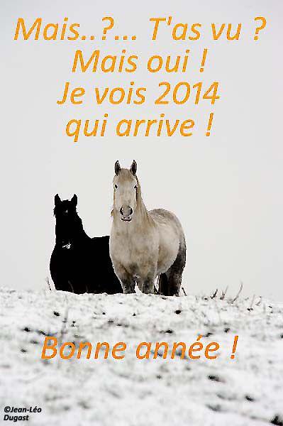 Les percherons vous souhaitent une bonne année 2014