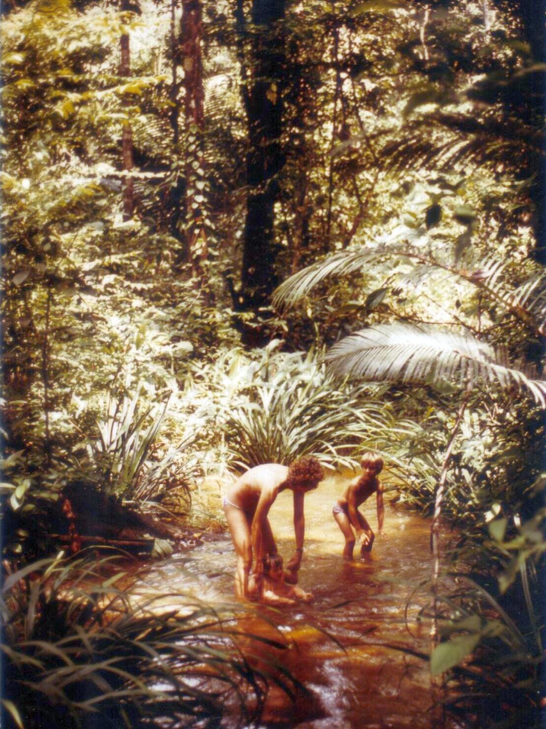Grande Forêt5.jpg