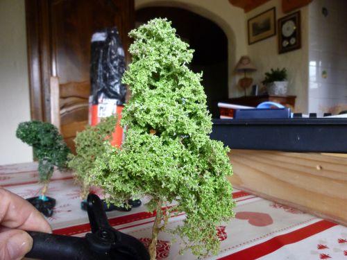 amélioration d'arbre en Zeeschium éssai