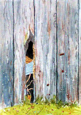 Mur de vieille grange (détail)