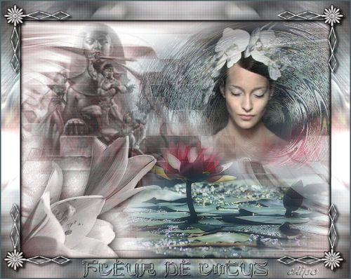 'Fleur de Lotus'