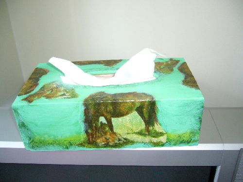 boîte à mouchoirs thème chevaux
