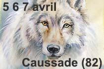 https://static.blog4ever.com/2006/01/92234/vignette-caussade-5-6-7-avril-2019.jpg