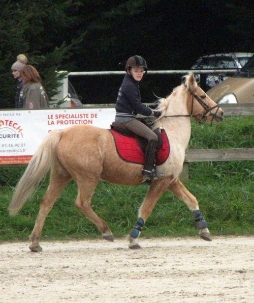 Mikaël et Loscar en poney 4