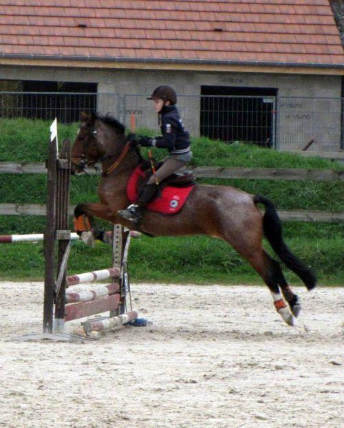 Mikaël et Karina terminent 12ème de l'épreuve poney 4