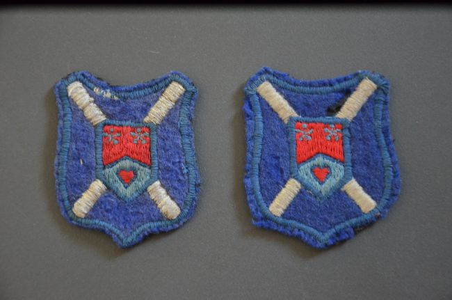 Insignes honorifiques du 10ème régiment de Dragons