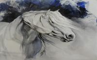 Le cheval de lumière