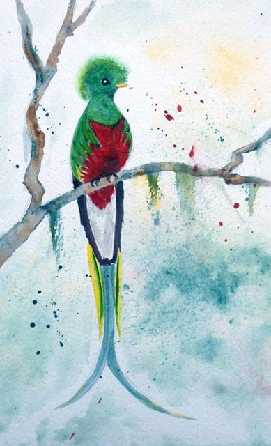 Q - Quetzal.JPG