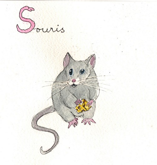 S - Souris.jpg