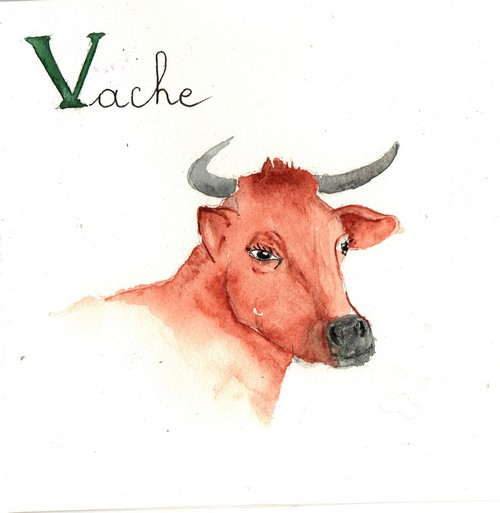 V - Vache.jpg