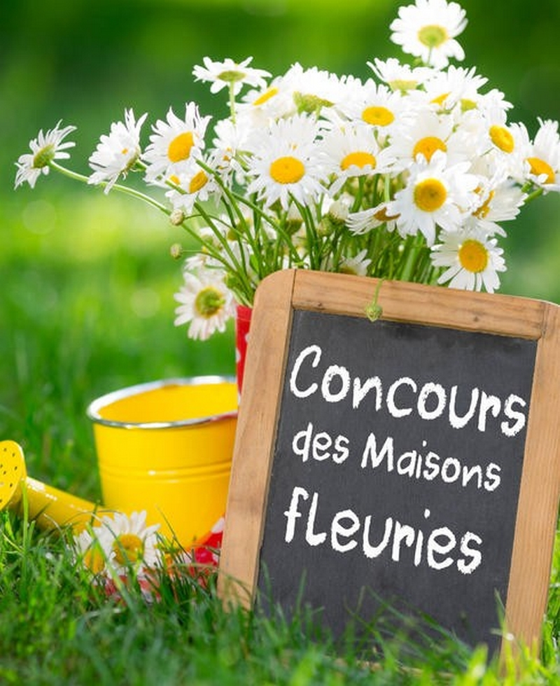 maisons_fleuries.jpg