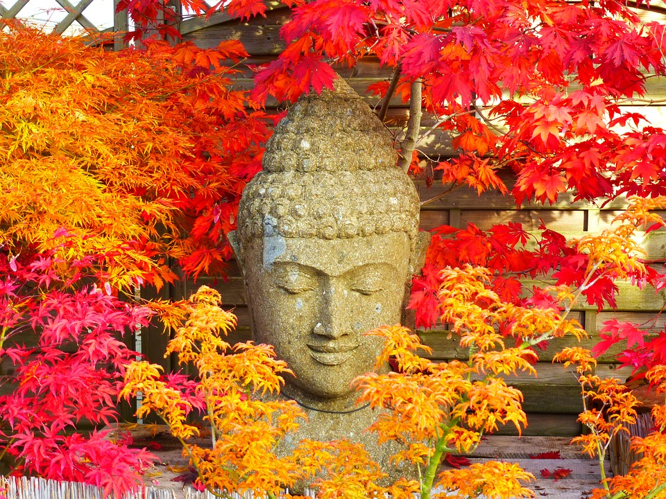 buddha-2505791_960_720.jpg