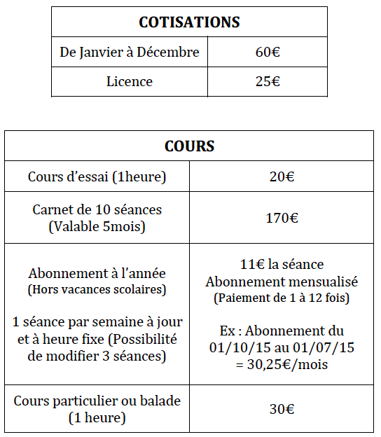 tarif cours poneys.png