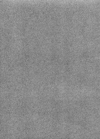 galuchat gris bleu.jpg
