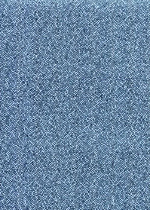galuchat bleu (2).jpg