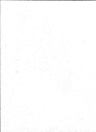 skivertex buffle blanc.jpg