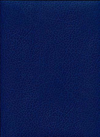 skivertex bleu roy.jpg