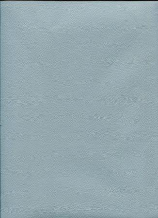 chevreau gris bleuté.jpg