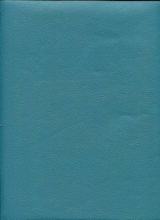 chevreau bleu pétrole (1).jpg