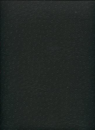 strauss noir.jpg
