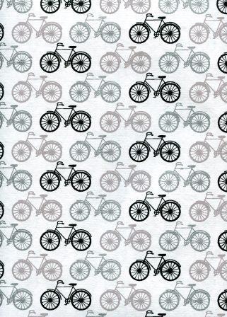 bicyclette noire gris argent.jpg