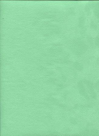 simili soft vert d'eau.jpg