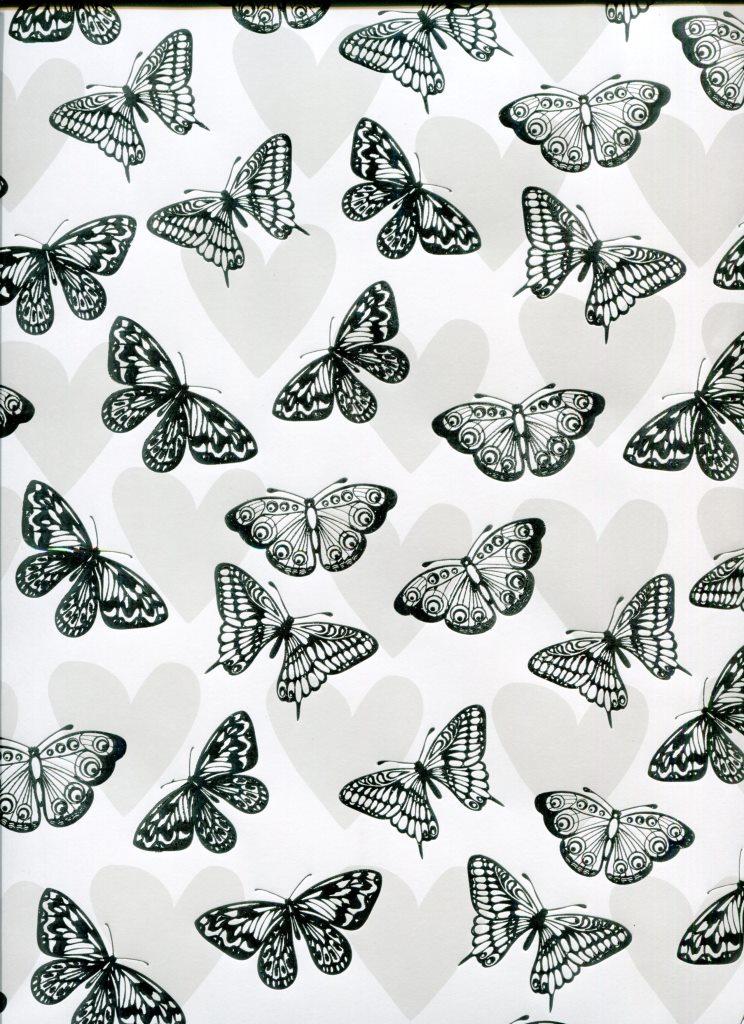 papillon argenté.jpg