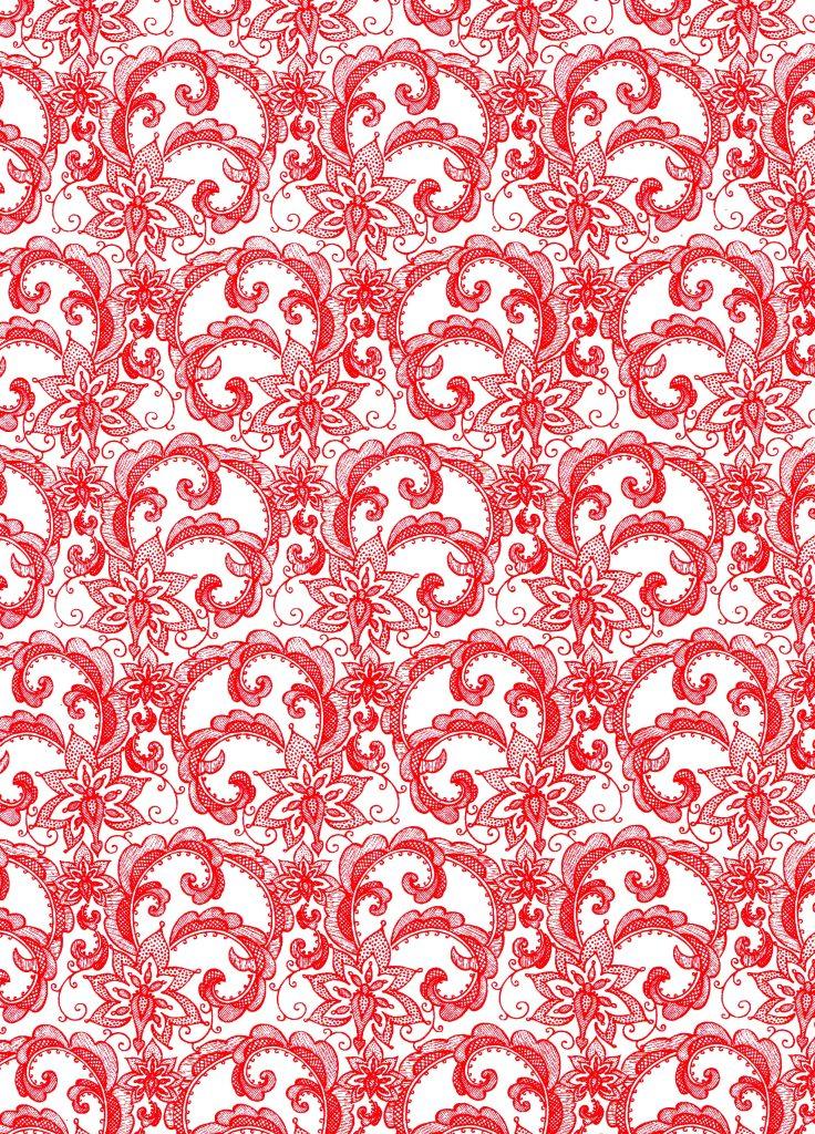 dentelline rouge fond blanc.jpg